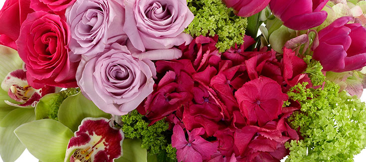 Vibrant Fresh Flowers for delivery in Fort Lee, Paramus, and West Orange.
