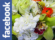 Find Metropolitan Plant and Flower Exchange on Facebook