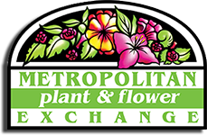 Metropolitan Plant and Flowever Exchange, delivering flowers from three locations in New Jersey