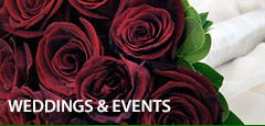 Weddings & Special Events, we can help you plan yours today with wedding flowers and event decor from your florist in New Jersey, Metropolitan Plant and Flower Exchange