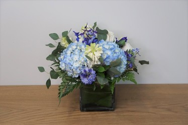 Blue Charm from Metropolitan Plant & Flower Exchange, local NJ florist