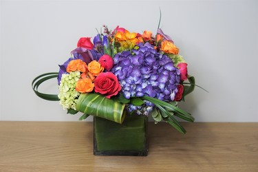 Bright Collection from Metropolitan Plant & Flower Exchange, local NJ florist