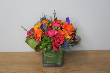 Brilliant Charm from Metropolitan Plant & Flower Exchange, local NJ florist
