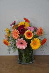 Gerbera Brights from Metropolitan Plant & Flower Exchange, local NJ florist