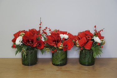 Jingle Bell Trio from Metropolitan Plant & Flower Exchange, local NJ florist