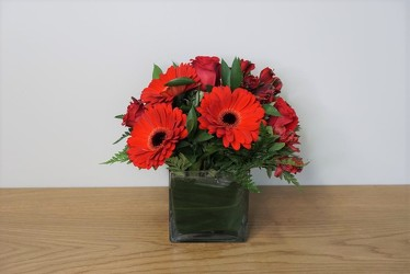 Modern Red from Metropolitan Plant & Flower Exchange, local NJ florist