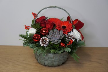 Night Before Christmas from Metropolitan Plant & Flower Exchange, local NJ florist