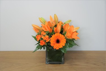 Orange Delight from Metropolitan Plant & Flower Exchange, local NJ florist