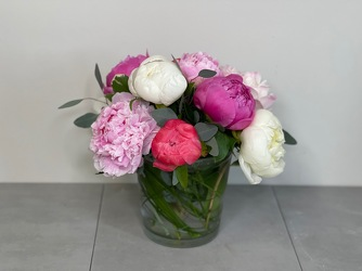 Pure Peony from Metropolitan Plant & Flower Exchange, local NJ florist