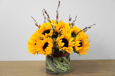 Sunny Sunflowers from Metropolitan Plant & Flower Exchange, local NJ florist