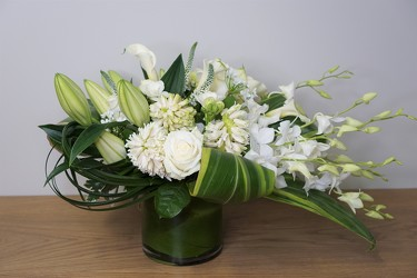 White Splendor from Metropolitan Plant & Flower Exchange, local NJ florist