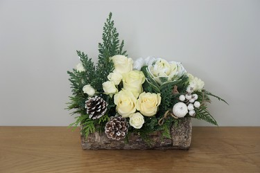 Yule Log from Metropolitan Plant & Flower Exchange, local NJ florist
