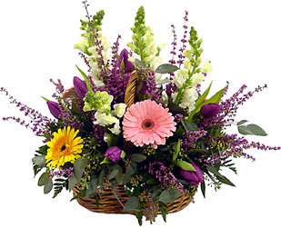 Country Basket from Metropolitan Plant & Flower Exchange, local NJ florist