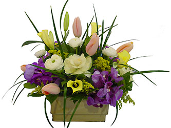 Classy Collection from Metropolitan Plant & Flower Exchange, local NJ florist