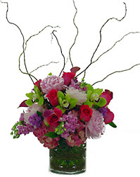 Whimsical Wonder from Metropolitan Plant & Flower Exchange, local NJ florist
