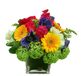 Sweet Thoughts from Metropolitan Plant & Flower Exchange, local NJ florist