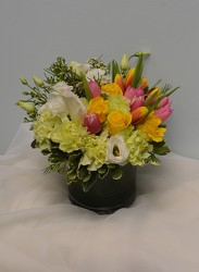 Spring Fling from Metropolitan Plant & Flower Exchange, local NJ florist