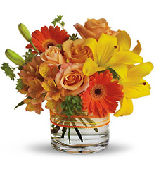 Sunny Siesta from Metropolitan Plant & Flower Exchange, local NJ florist