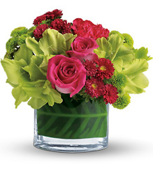 Beauty Secret from Metropolitan Plant & Flower Exchange, local NJ florist