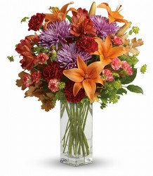 Fall Brights from Metropolitan Plant & Flower Exchange, local NJ florist