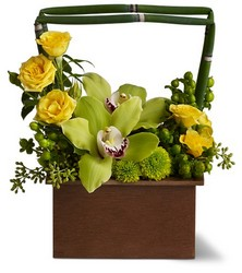 Picture Perfect from Metropolitan Plant & Flower Exchange, local NJ florist