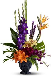 Paradise Blooms from Metropolitan Plant & Flower Exchange, local NJ florist