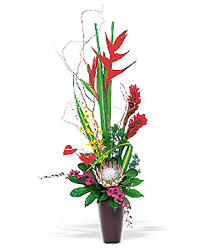 Simply Tropical from Metropolitan Plant & Flower Exchange, local NJ florist
