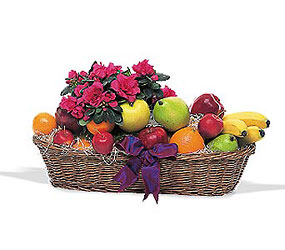 Plant & Fruit Basket from Metropolitan Plant & Flower Exchange, local NJ florist