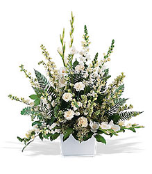 White Expressions  from Metropolitan Plant & Flower Exchange, local NJ florist